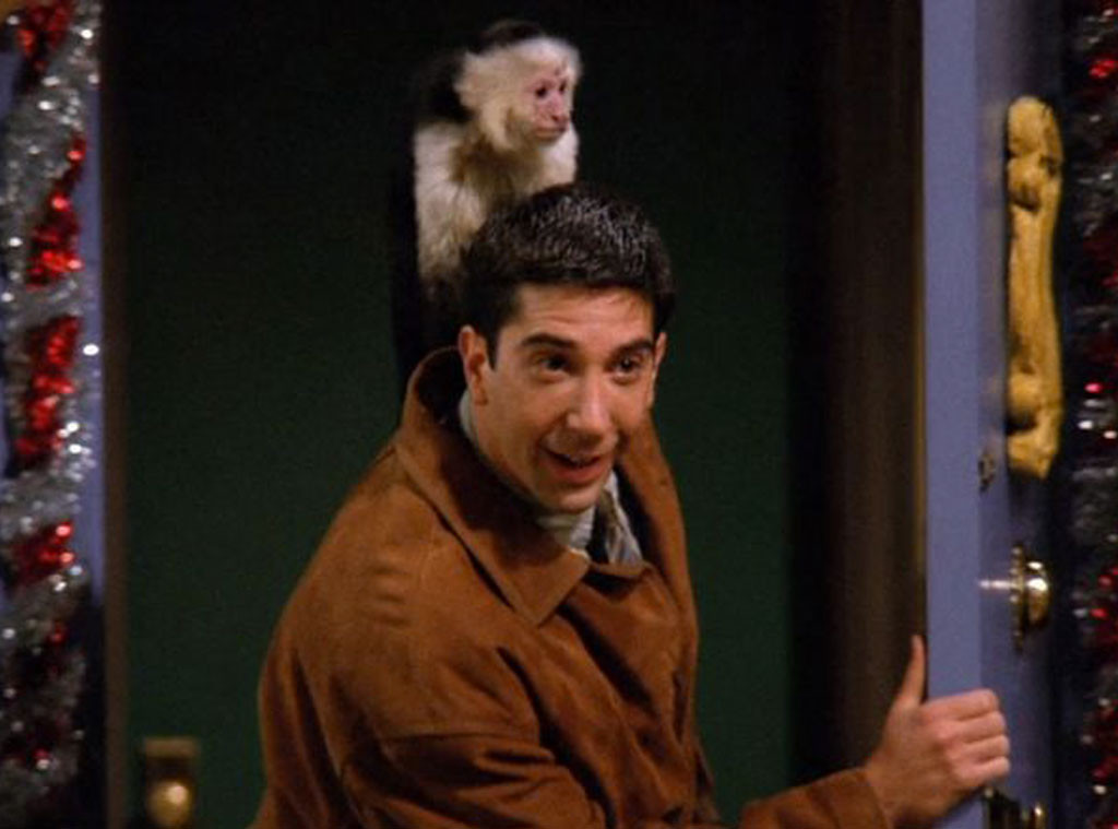 David Schwimmer, Marcel The Monkey, Friends