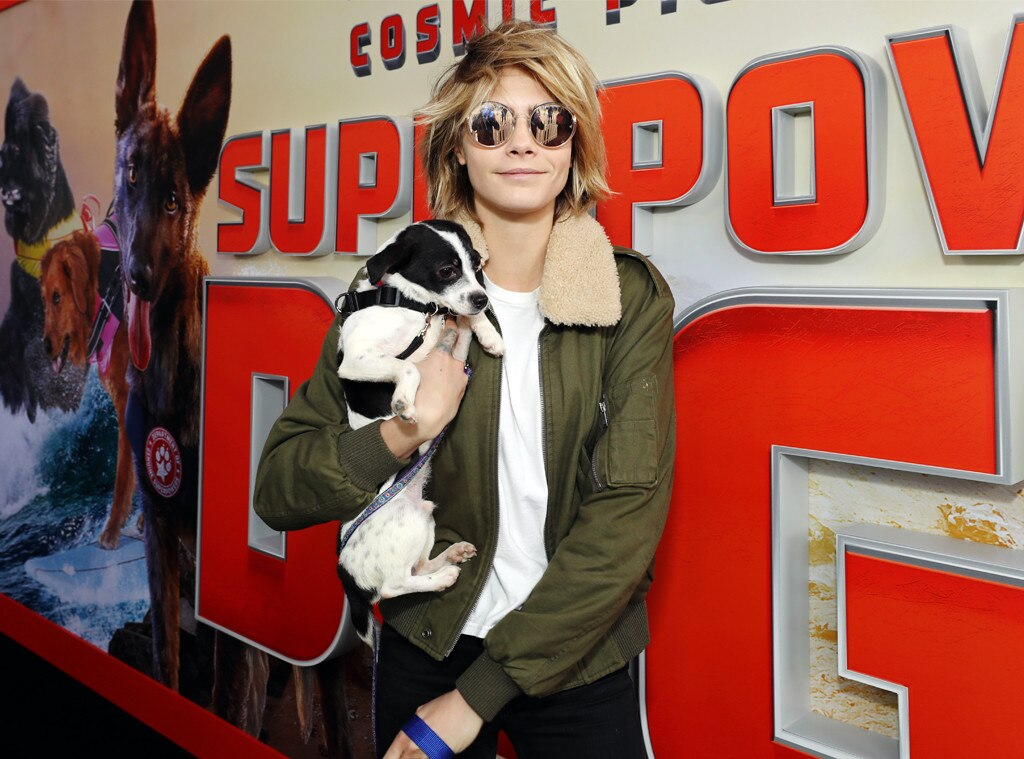Cara Delevingne -  Puppy power! The model and her canine friend attendthe world premiere of  Superpower Dogs  at the California Science Center in L.A.