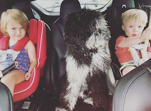 Kelly Clarkson, Kids, River Rose Blackstock, Remington Alexander Blackstock