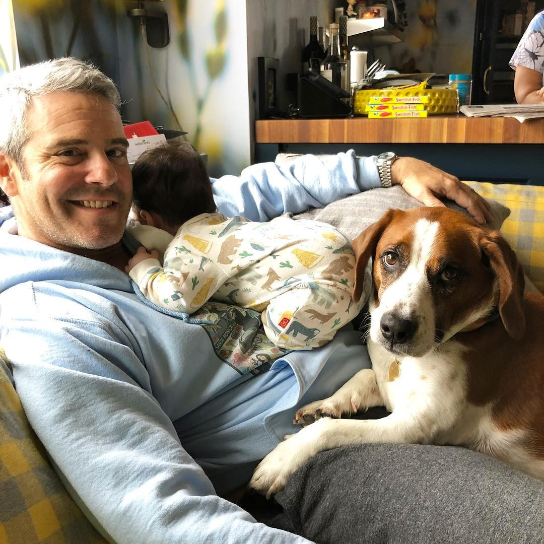 """Andy Cohen -  """"Happy Easter, from us,"""" he wrote, alongside this photo of him and his baby boy, Benjamin ."""