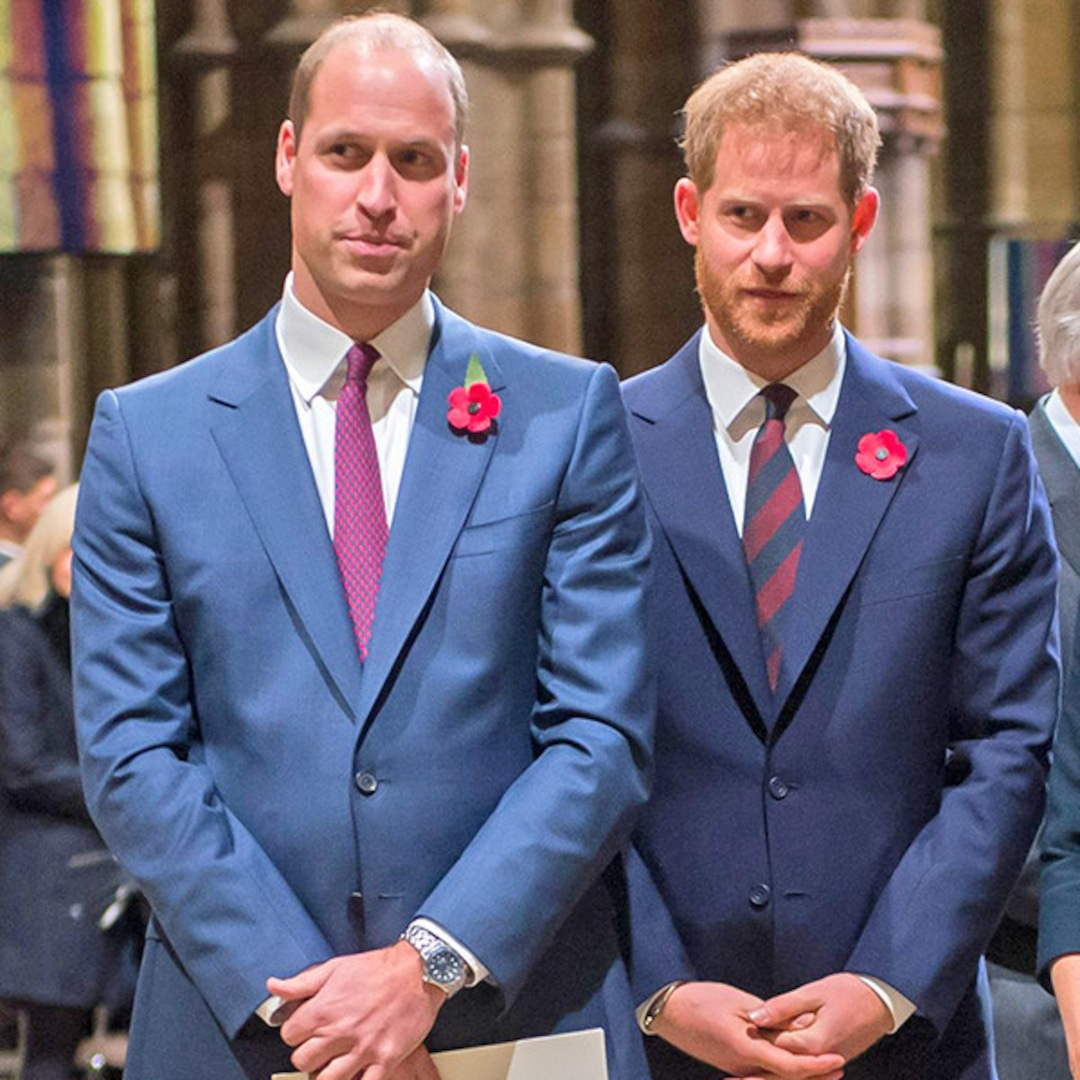 """Prince William """"Could Not Comprehend"""" Why Prince Harry Refused to Reveal Archie's Godparents New Book – E! NEWS"""