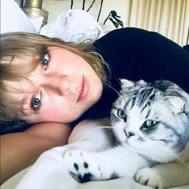 Taylor Swift, Meredith, Cat