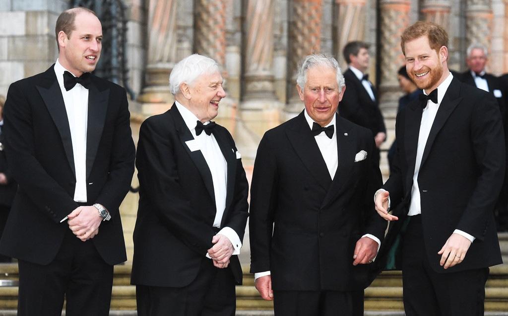 Prince William, Sir David Attenborough, Prince Charles, Prince Harry
