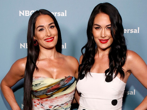 Brie and Nikki Bella Announce They Are Both Pregnant