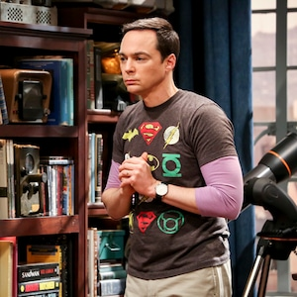 The Big Bang Theory, Series Finale