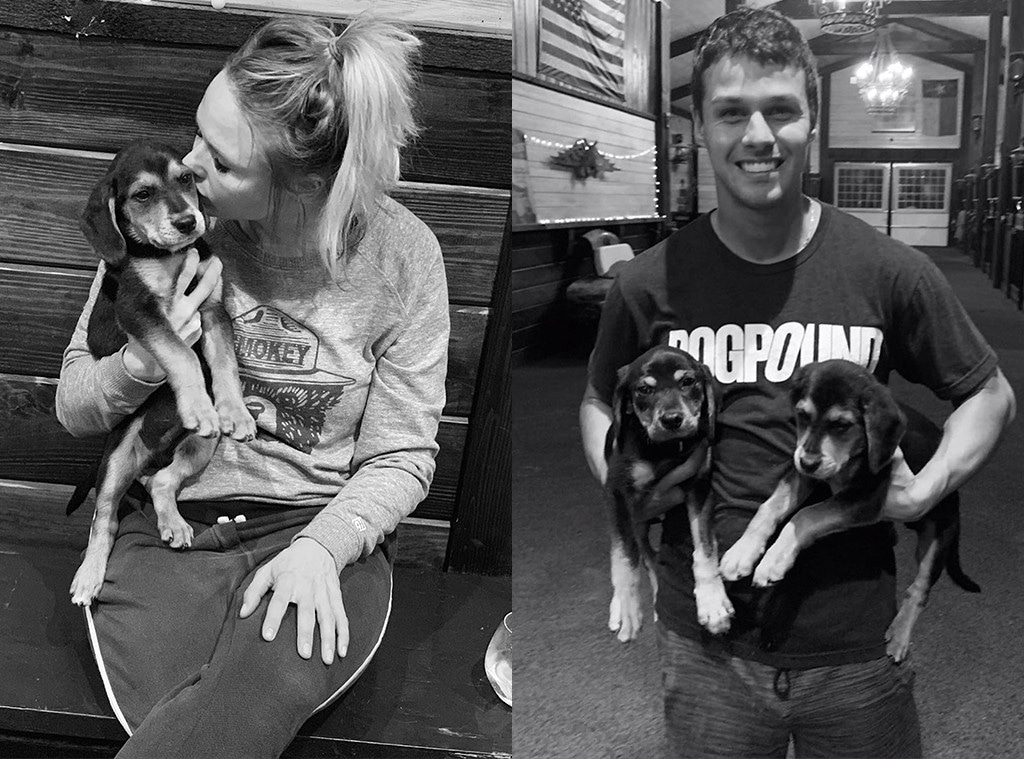 Miranda Lambert, Brendan McLoughlin, Puppies