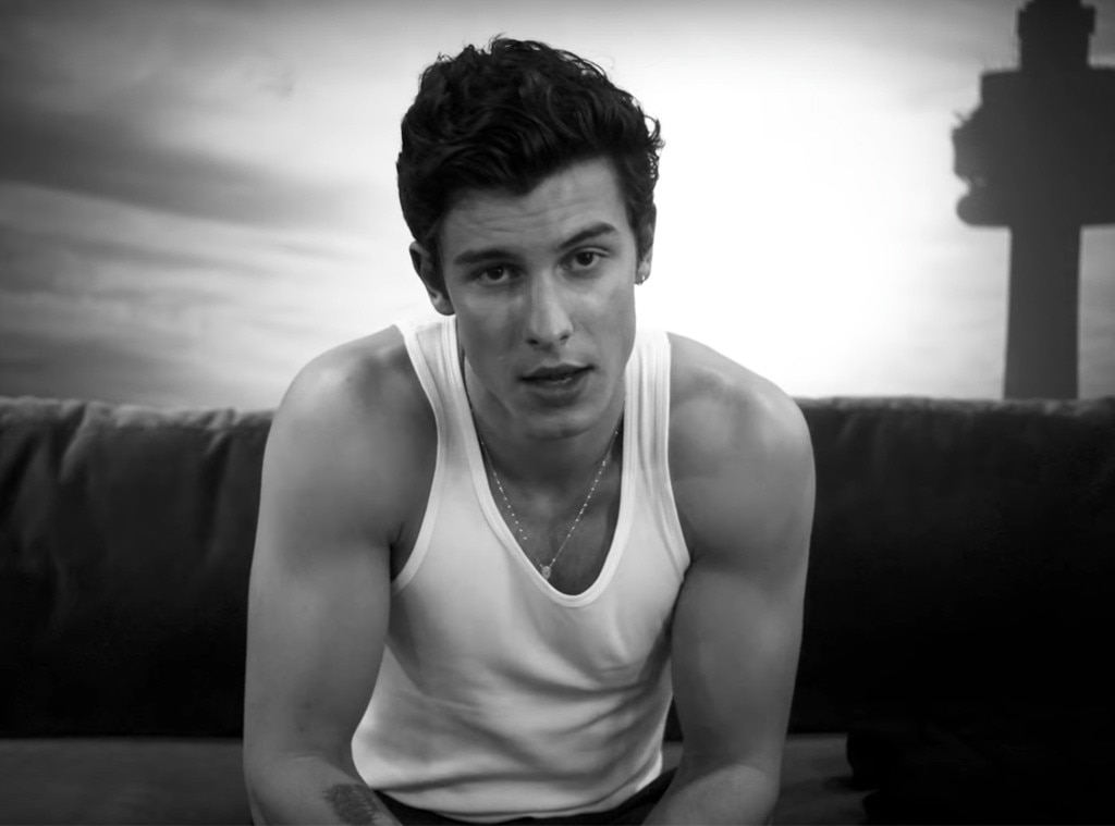 Shawn Mendes Drops New Single 'If I Can't Have You' With Video