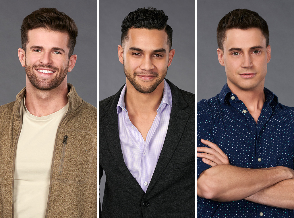 The Bios for Hannah Brown's The Bachelorette Contestants Are