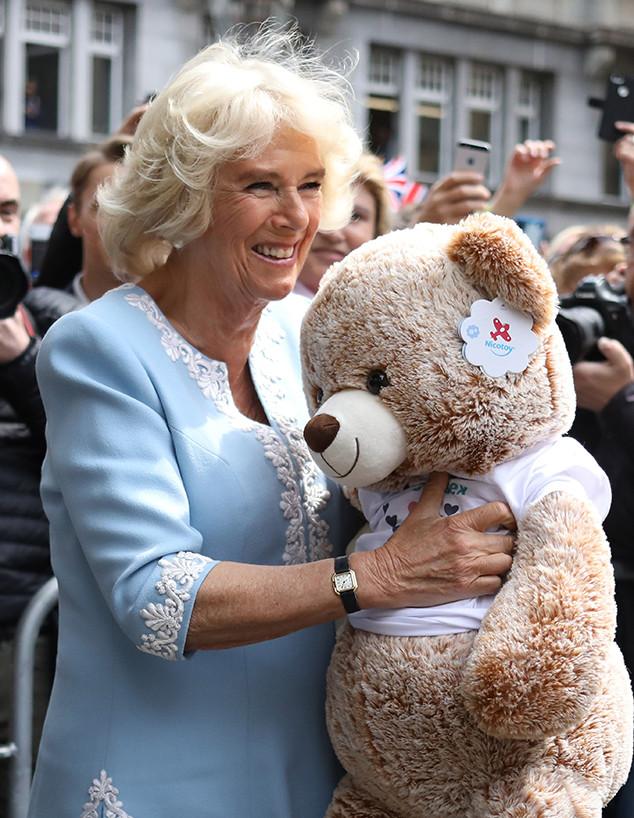 Camilla, Duchess of Cornwall, Teddy Bear