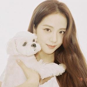 Jisoo, Celebrity Pets