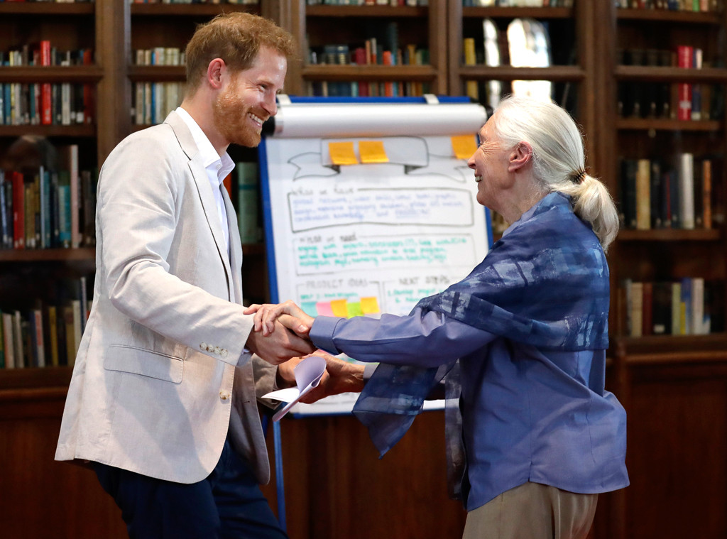 Prince Harry, Dr Jane Goodall