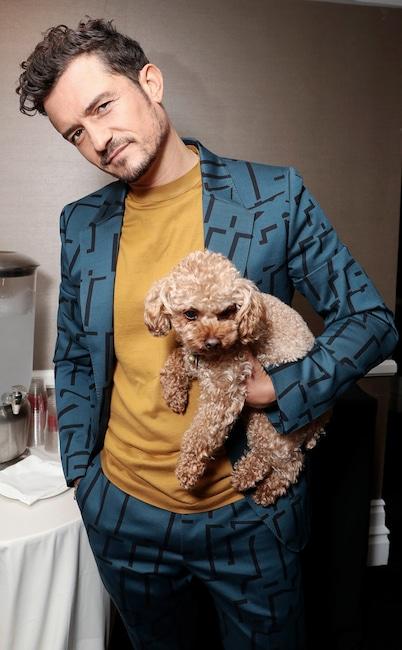 Orlando Bloom, TCA, Dog, Mighty, National Puppy Day 2020