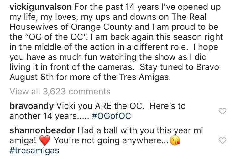 Vicki Gunvalson, Real Housewives, Instagram