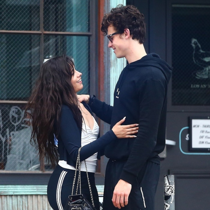 Image result for shawn mendes and camila cabello
