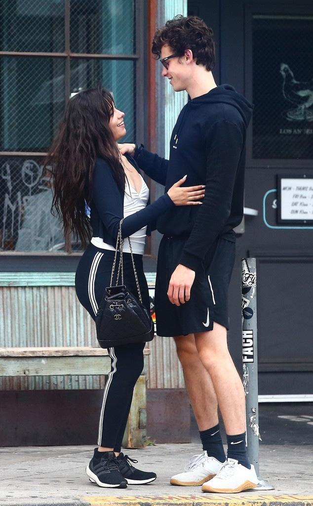 Shawn Mendes, Camila Cabello