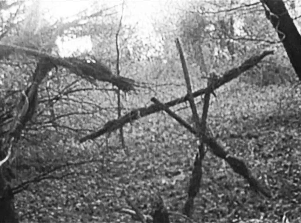 21 Haunting Facts About The Blair Witch Project E Online Deutschland