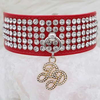 E-Commerce National Dog Day, Jewel Collar