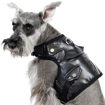 E-Commerce National Dog Day, Faux Leather Dog Harness Vest