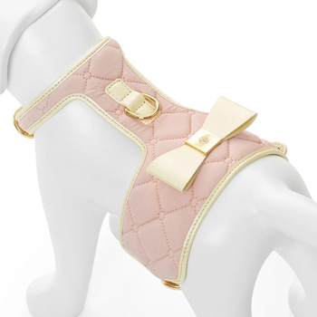 E-Commerce National Dog Day, Quilted Harness