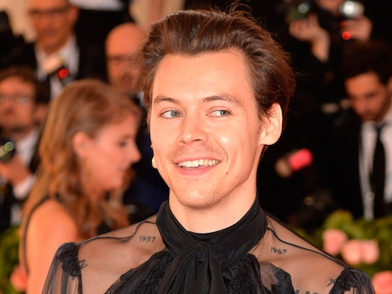 Harry Styles Gives a Refreshingly Honest Answer About His Sexuality