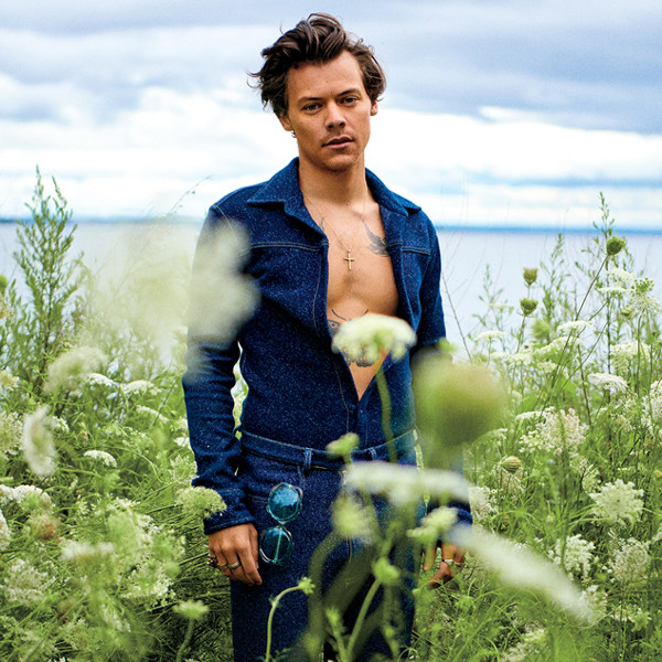 Harry Styles' Biggest Rolling Stone Bombshells: Sex, Drugs and One Direction