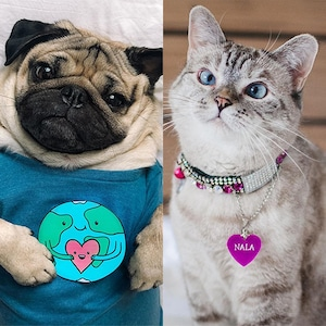 Doug The Pug, Nala The Cat