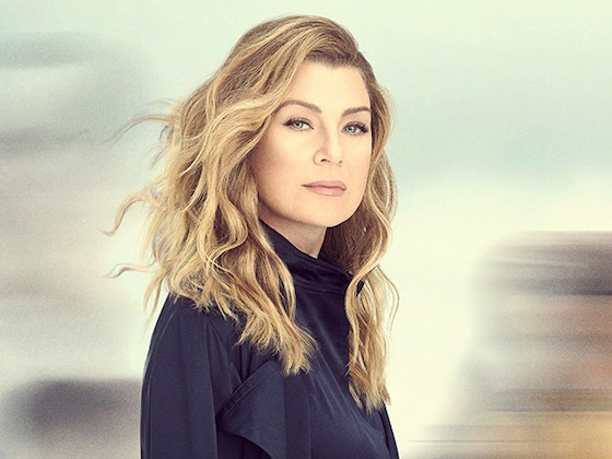 <i>Grey's Anatomy</i> Has a Big Question to Ask On Stunning Season 16 Poster