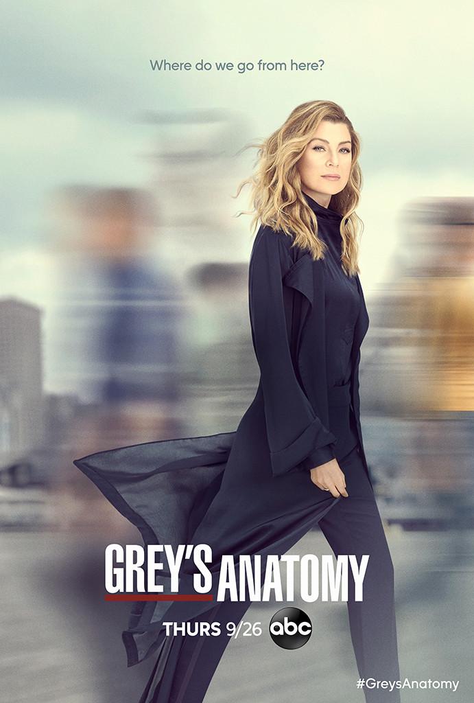 Grey's Anatomy, Season 16 Key Art