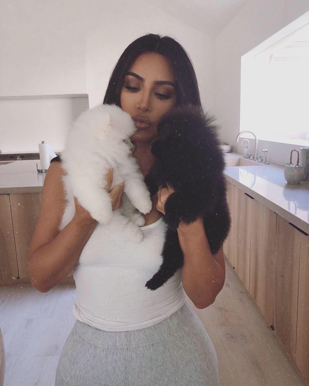 Kim Kardashian, Pets