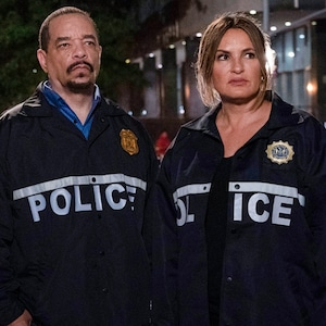 Law and Order: SVU, Law & Order: SVU