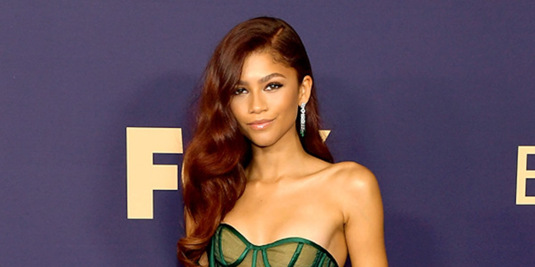 Every Time Zendaya Slayed the Red Carpet - E! Online.jpg