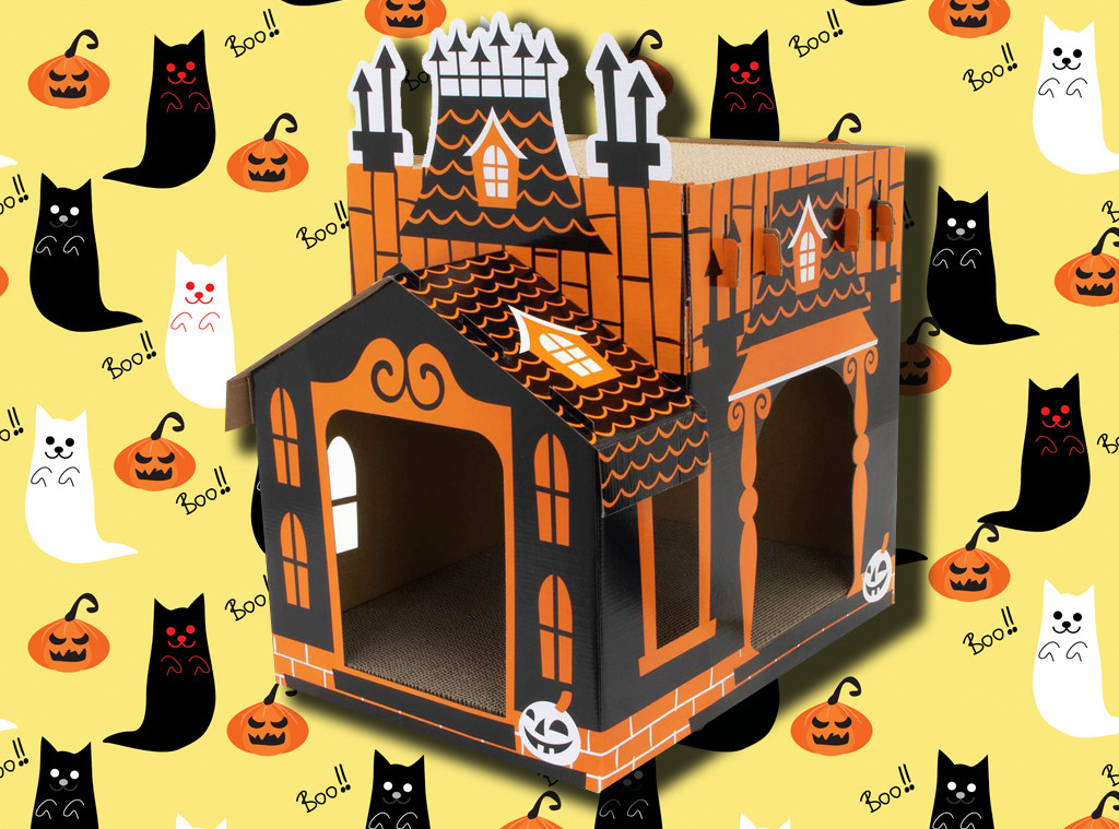 Ecomm: Cat Lovers Halloween Must-Have