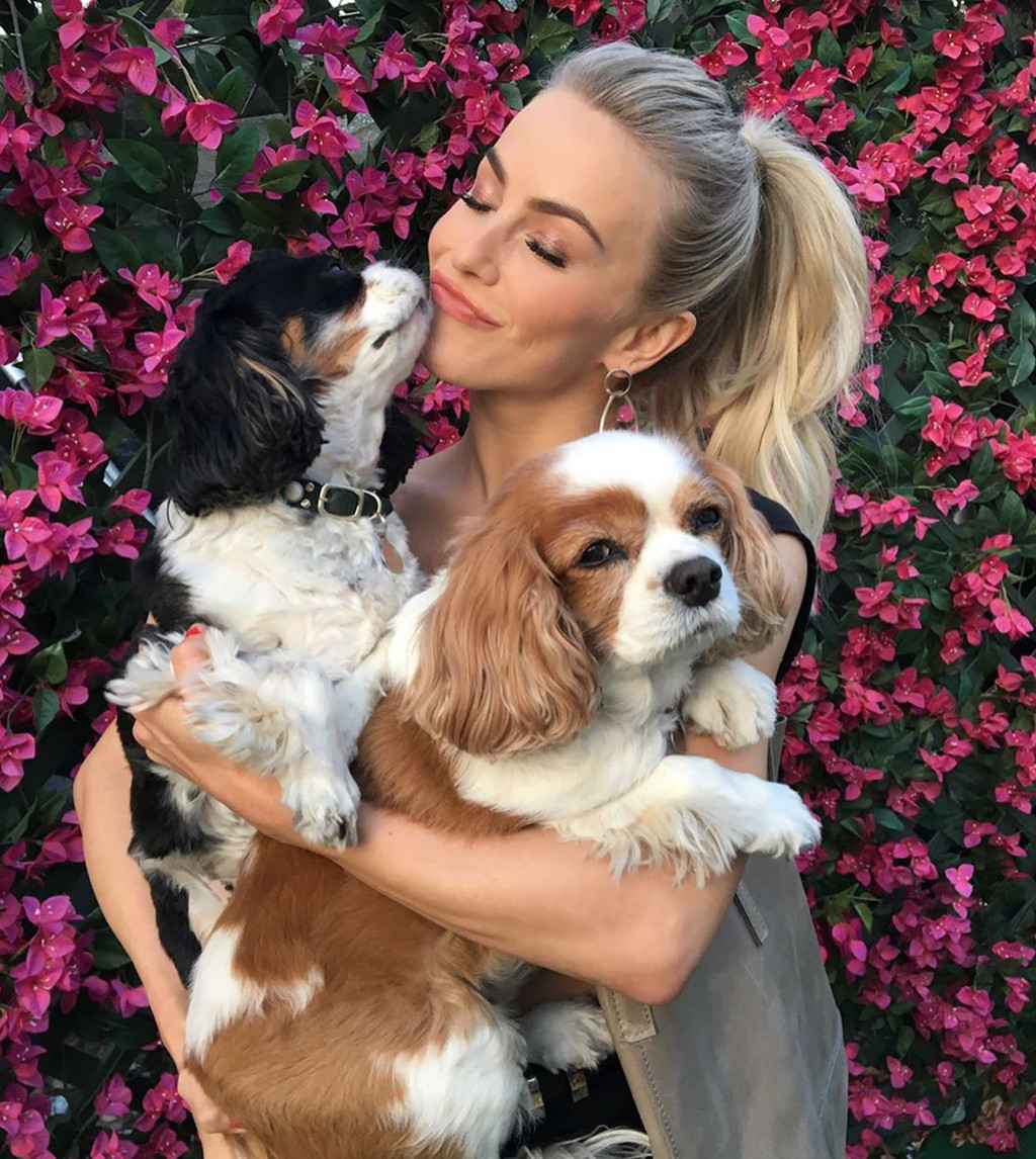 Julianne Hough, Dogs