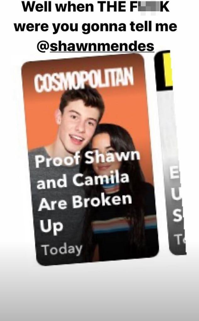 Camila Cabello, Shawn Mendes, Instagram