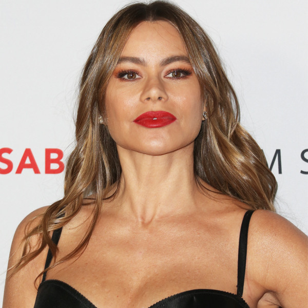Sofia Vergara Ordered to Pay Ex Nearly $80,000 Amid Frozen Embryos Legal Battle