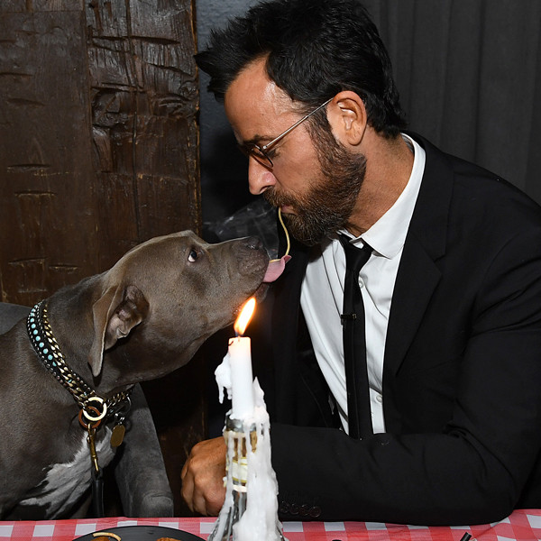 Justin Theroux Reenacts Iconic Lady and the Tramp Spaghetti Scene With His Dog