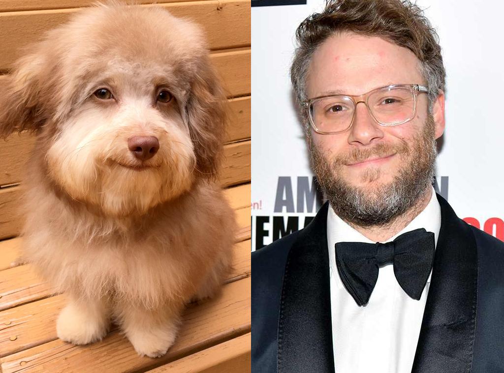 Seth Rogen, Dog