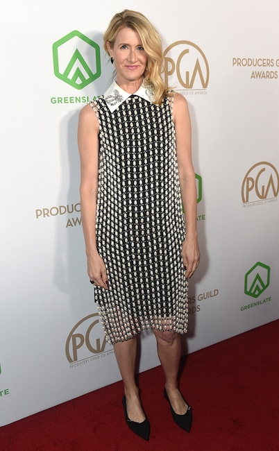 Laura Dern, 2020 Producers Guild Awards