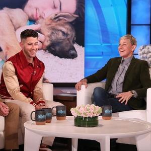 Nick Jonas, Gino, The Ellen DeGeneres Show 2020
