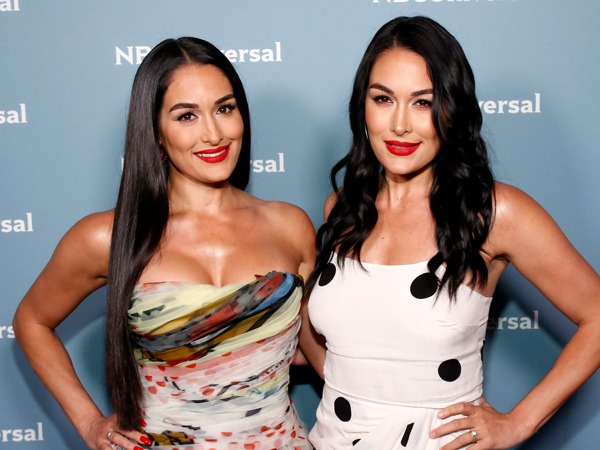 Brie and Nikki Bella's Famous Friends Congratulate Them on Their Pregnancies