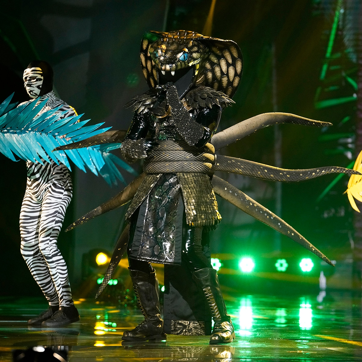 The Masked Singer Unmasks Serpent And Whatchamacallit E Online Uk