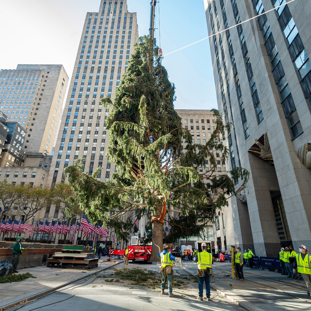How to Watch the 2020 Rockefeller Center Christmas Tree Lighting