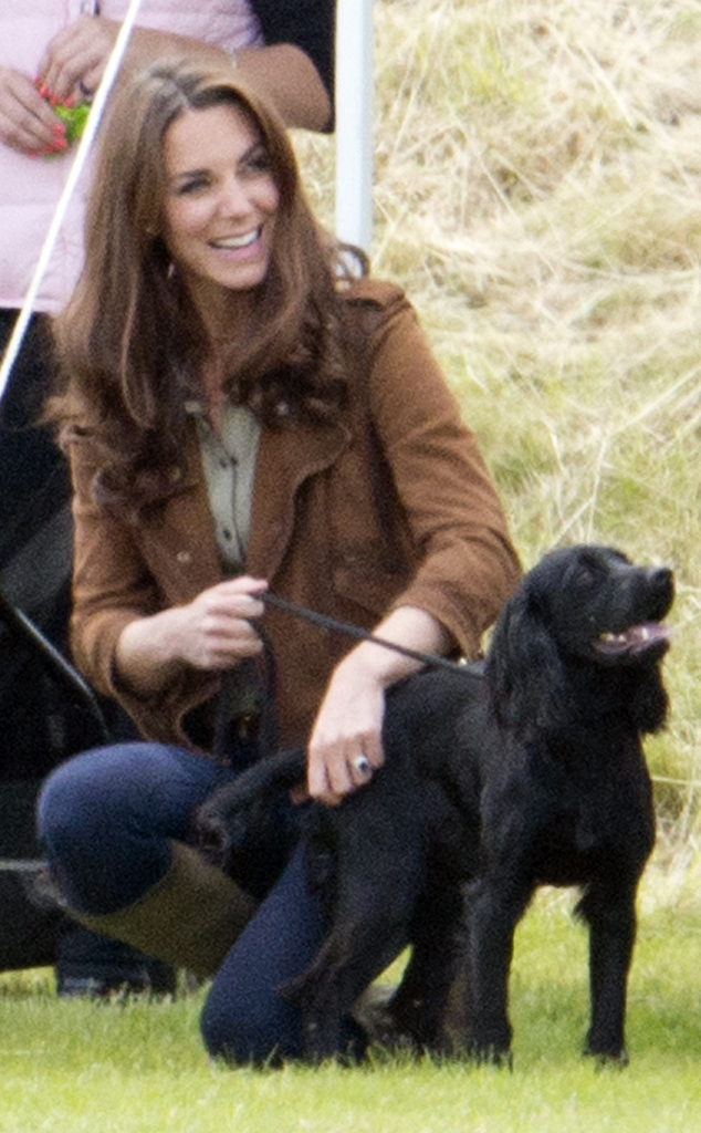 Lupo the Dog, Prince William, Kate Middleton