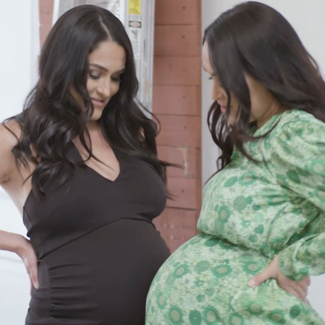 Brie and Nikki Bella welcome baby boys one day apart