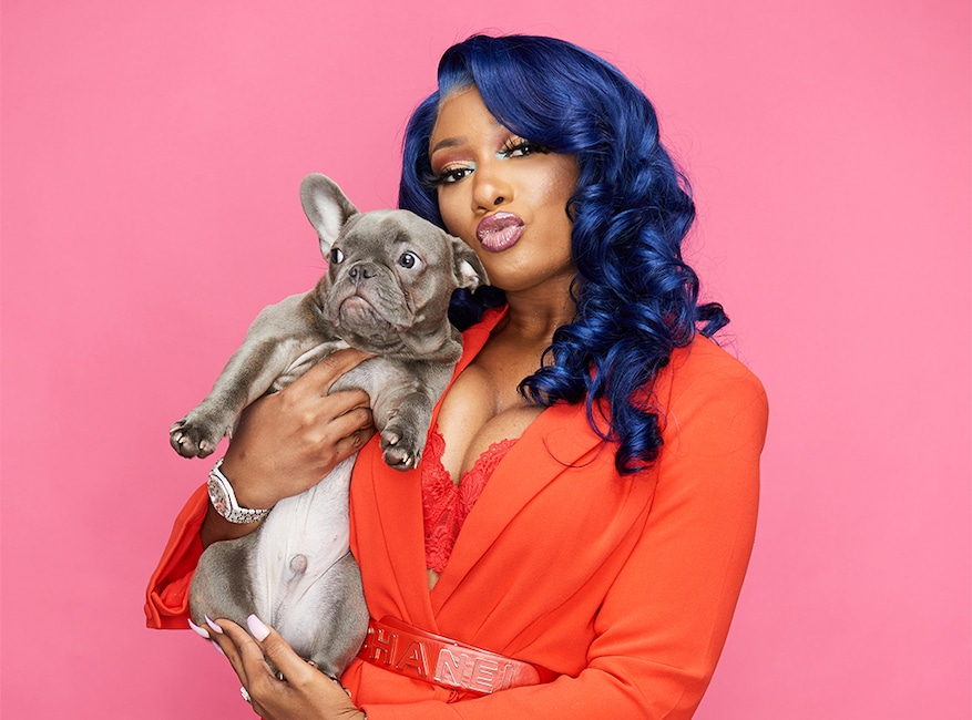 Megan Thee Stallion, Dog, Four, National Puppy Day 2020