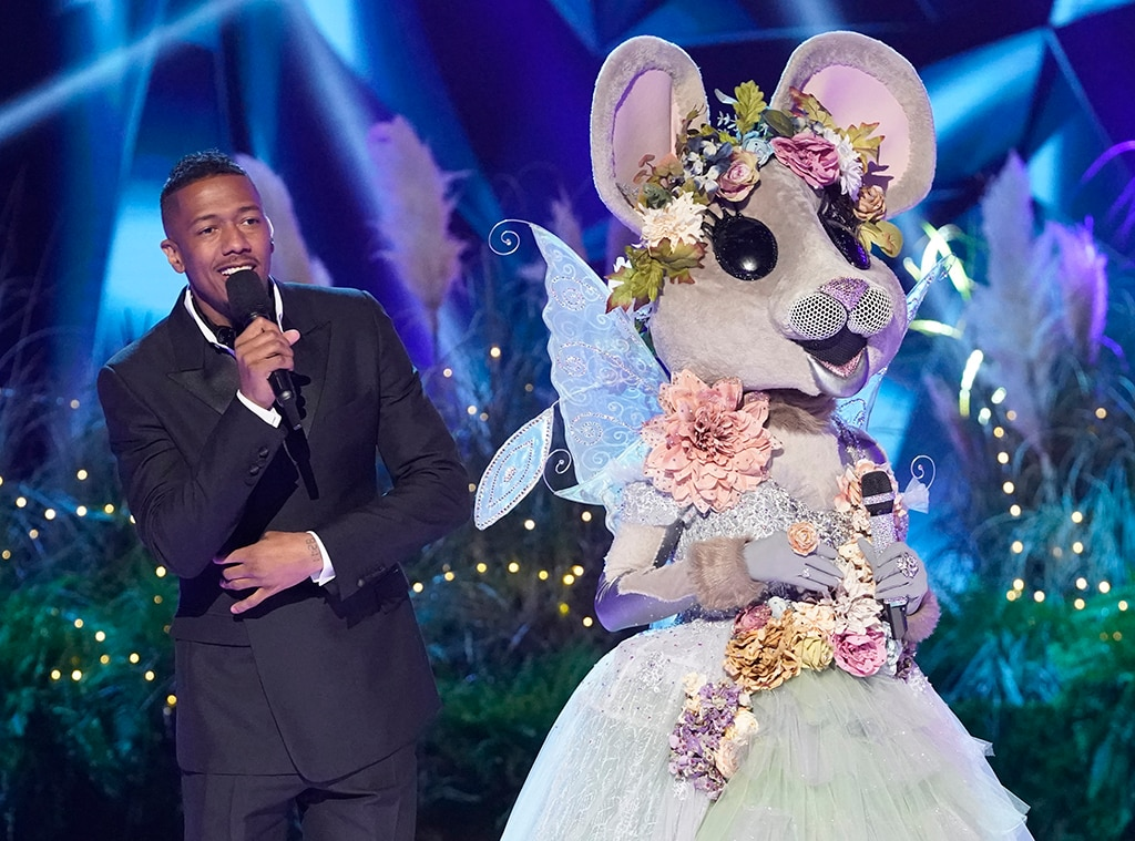 Who Was Unmasked on The Masked Singer Last Night - Masked Singer Eliminations