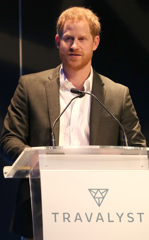 Prince Harry, Tourism Summit