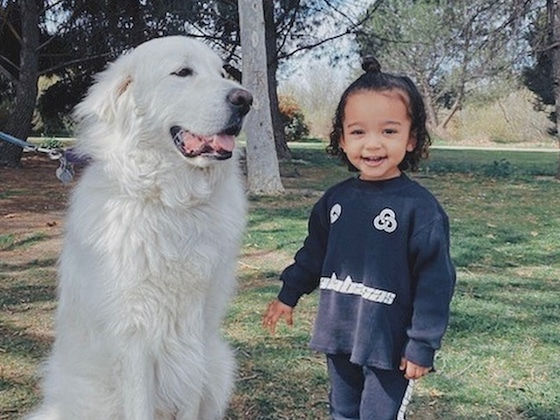 Chicago West Hugging a Giant Dog Is a Gift to All Animal Lovers