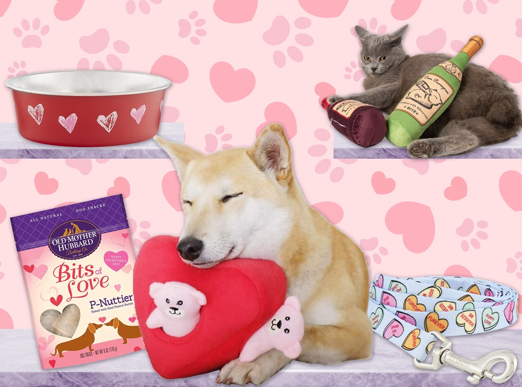 E-Comm: Gifts for Your Furry Valentine