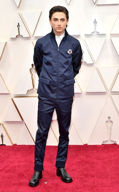 Timothée Chalamet, 2020 Oscars, Academy Awards, Red Carpet Fashions